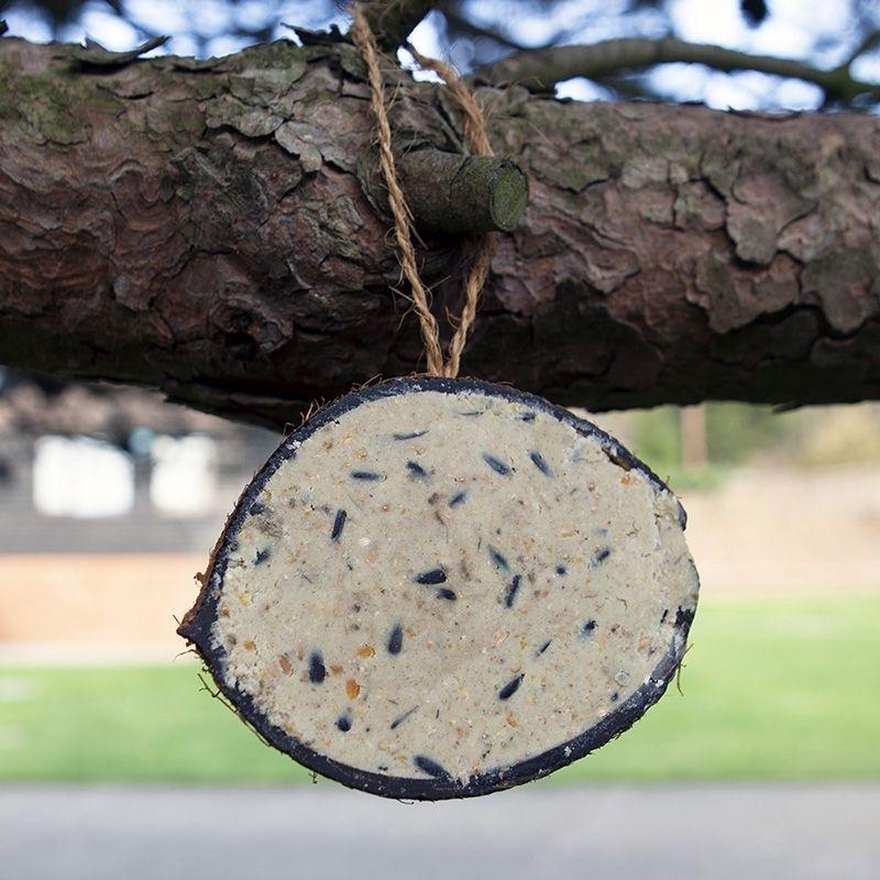 Super Suet Coconut Shells for Wild Birds