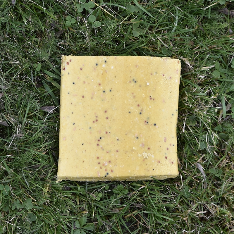 Suet Blocks Insect & Mealworm