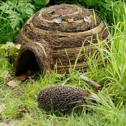 Igloo Hedgehog House