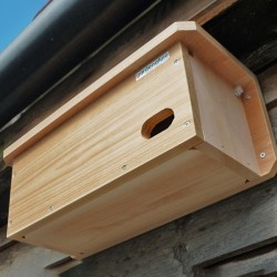 Swift Nest Box Camera System (Wired)