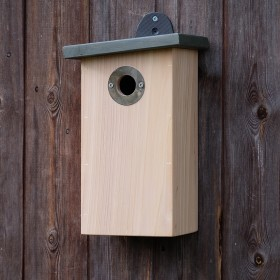 Simon King Predator Resistant Nest Box