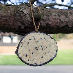 Super Suet Coconut Shells for Wild Birds