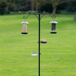 Tom Chambers Everyday Bird Station