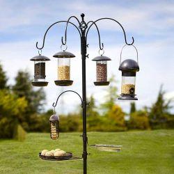 Select Bird Station