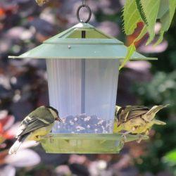 Eco Beacon Bird Seed Feeder