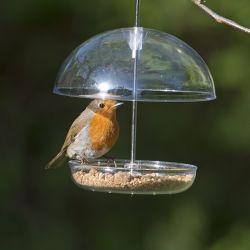 I Love Robins® Feeder