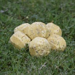 Insect and Mealworm Suet Ball