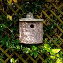Natural Log Bird Nest Box