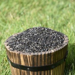 Nyger Seeds for Birds