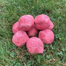 Suet Balls Berry