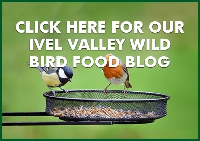 Wild Bird Food Blog